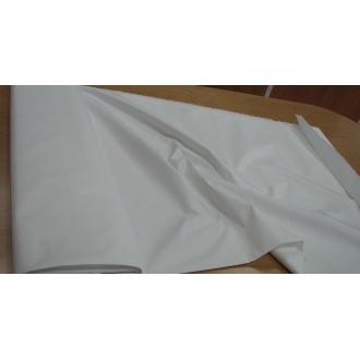 Plášťovka biela