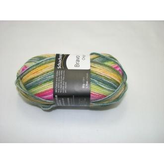 Schachenmayr Bravo color 50g - 02123ružovo zelený melír