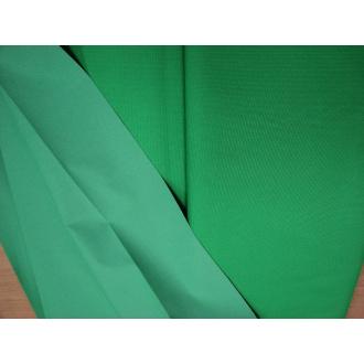 Plášťovka trávová zelená