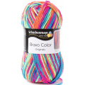 Bravo color 50g
